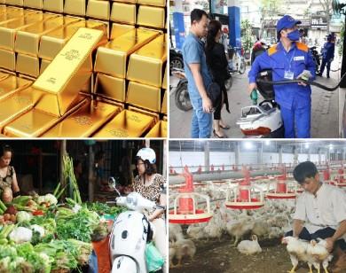 Tiêu dùng trong tuần: Giá vàng, rau, cua tăng mạnh, trong khi xăng dầu và gà rớt giá