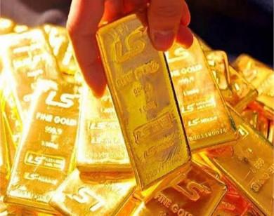 Giá vàng hôm nay 8/9/2020: Thế giới và trong nước giảm mạnh