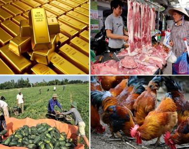 Tiêu dùng trong tuần: Giá vàng, thịt heo, trái cây tăng mạnh; trong khi tôm hùm và gia cầm rớt giá thê thảm