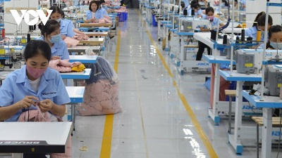 """Hoạt động trong """"vùng xanh"""" doanh nghiệp phải có sản lượng cao hơn"""